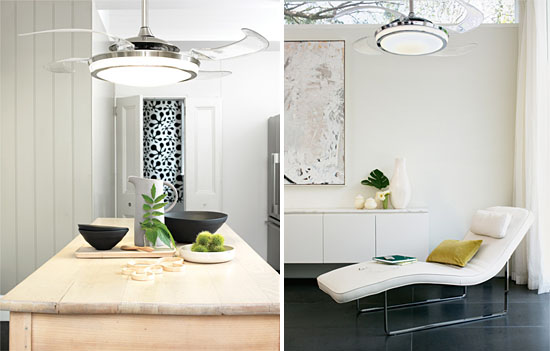 Lamp with retractable blade ceiling fans