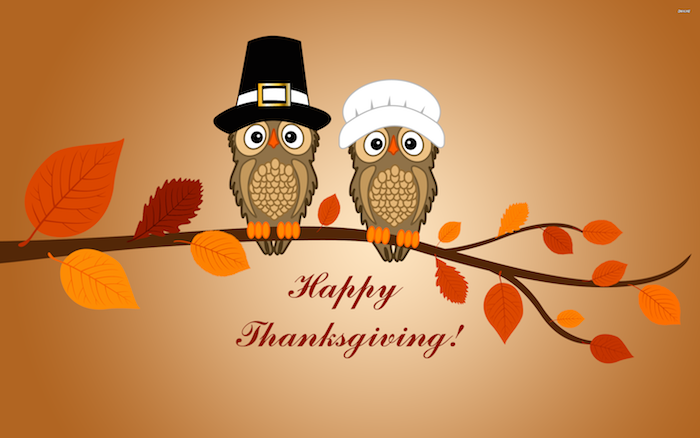 funny happy thanksgiving pictures, digital drawing, two cartoon owls in funny pilgrim hats, on a brown branch with red, yellow and brown leaves, happy thanksgiving is written in brown underneath