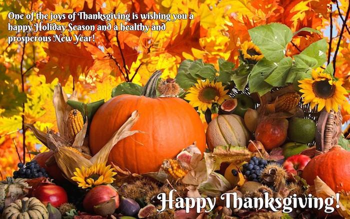harvest, big orange pumpkin, near sunflowers, apples, figs, grapes, chestnuts, corn, smaller pumpkins, green, yellow, orange autumn leaves, trees, wood