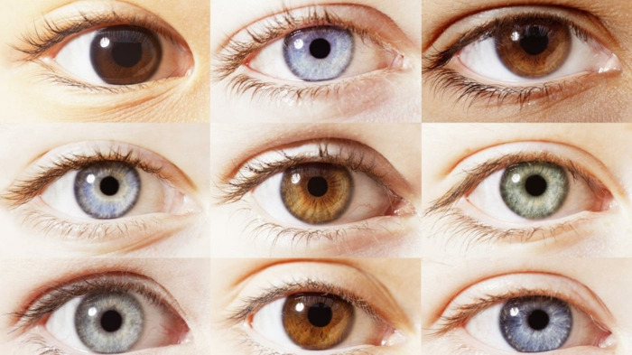 hazel eyes, nine diffeerntly colored eyes, different shades of brown, blue and green