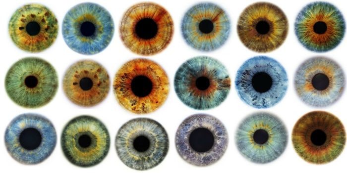 eye color chart, image containing photos of eighteen irises, each in a different color, with various shades