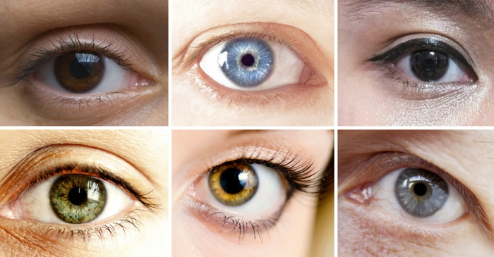 hazel eyes, six eyes in different colors, dark brown and black, light blue and green, light brown and grey