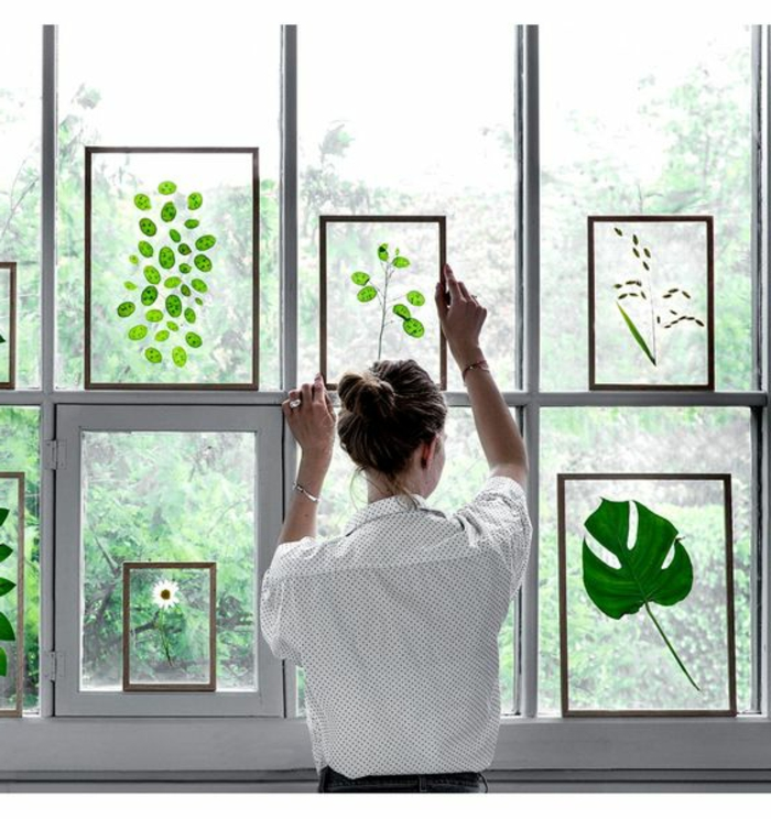 summer crafts for adults, woman wearing a white shirt with polka dot pattern, with brown hair in a bun, putting a pressed green plant, framed in glass, on a windowpane, near more similar framed plants