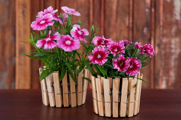 plant pots, decorated with wooden clothes pegs, and containing pink and purple planted flowers