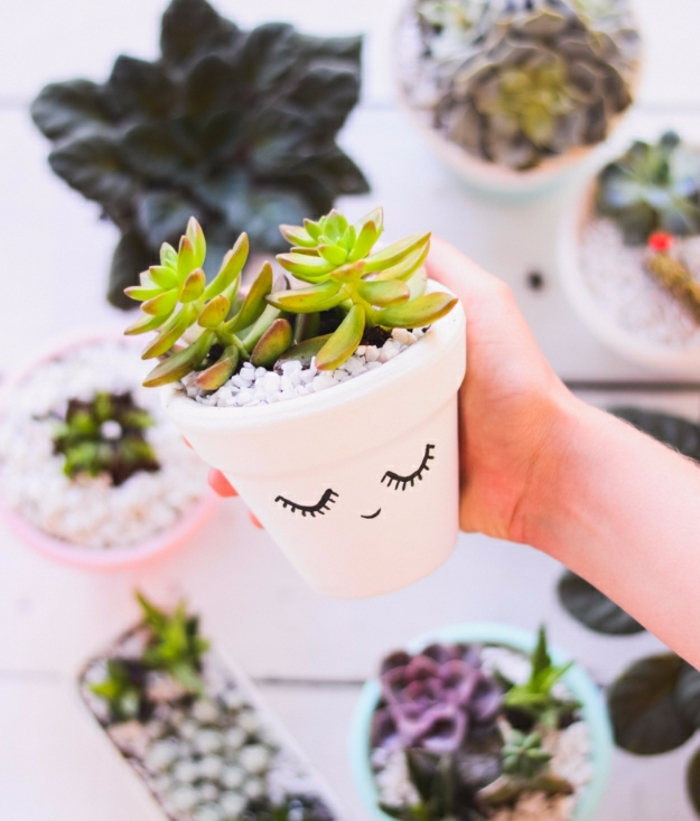 hand holding a small white flowerpot, with a painted cartoon face, containing small white pebbles and succulents, homemade crafts, more pots in background