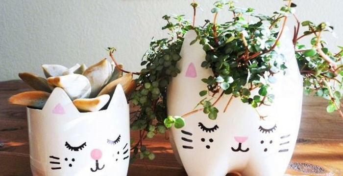 big and small white flower pots, with hand-painted cat faces, fun and easy crafts, each containing a different plant