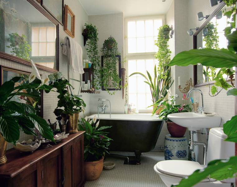 many different green indoor plants, inside bathroom with wooden furniture, white mosaic floor, white toilet and sink, black and white bathtub, framed images on walls