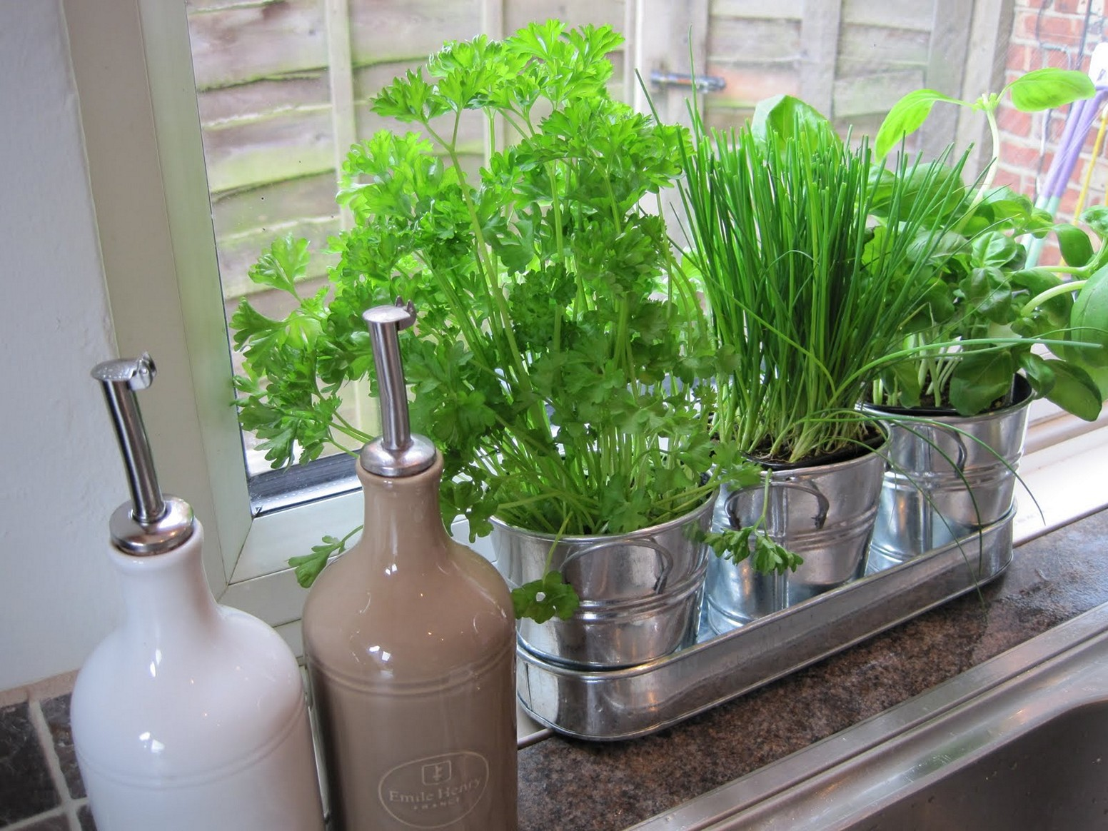 three metal pots, containing green herbs, parsley and chives and basil, in a metal tray, placed on a windowsill