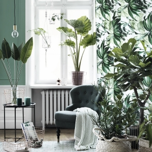 Revitalize Your Home with Lush Indoor Plants in Every Room