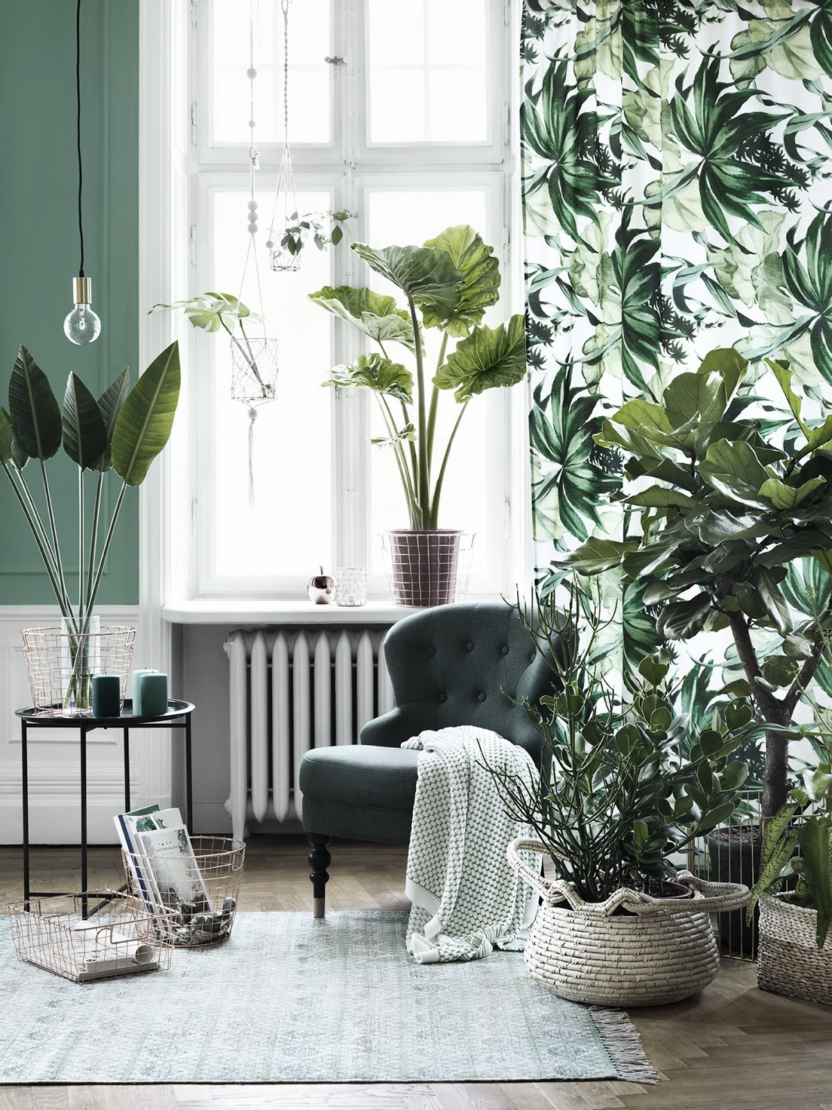 Revitalize Your Home with Lush Indoor Plants in Every Room on house plants for stairs, house plants for bathrooms, house plants for hallways, plants for low light rooms, plants that like dark rooms, house plants for offices,