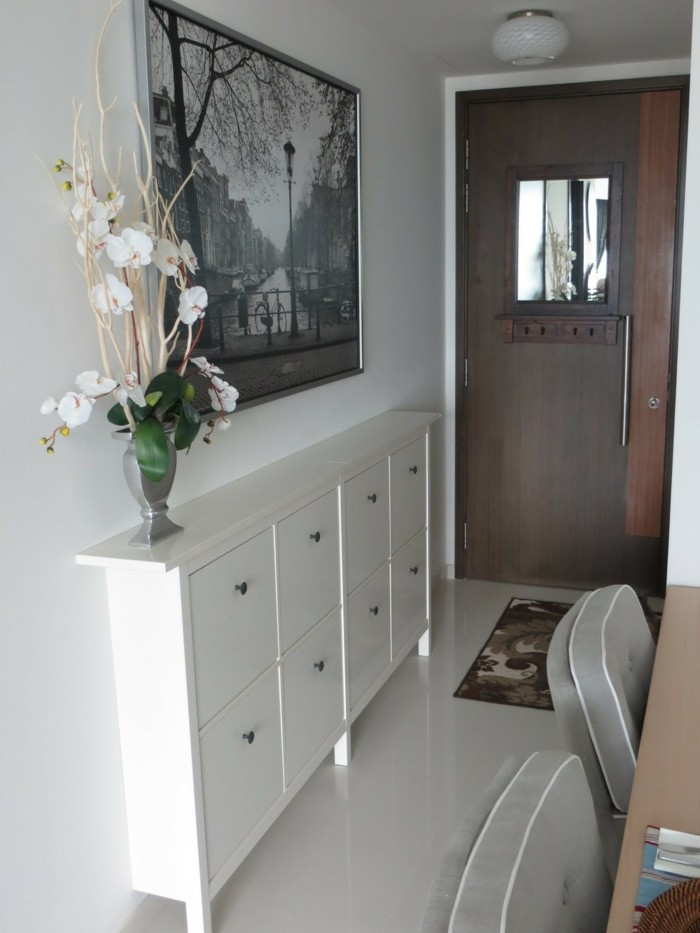 flowers in a vase, placed on a narrow white cupboard with eight compartments, hallway furniture ideas, near a brown front door, and large framed photograph
