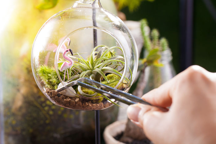 flamingo figurines made of pink plastic, inside a round glass air plant terrarium, filled with brown pebbles, green moss and tillandsias, hand placing a gray stone inside, using metal tweezers