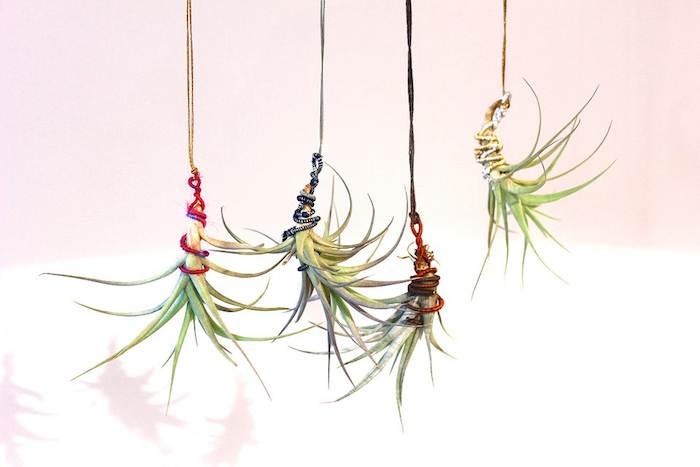 colorful strings in hot pink, and dark blue, red and yellow, wrapped around four hanging air plants