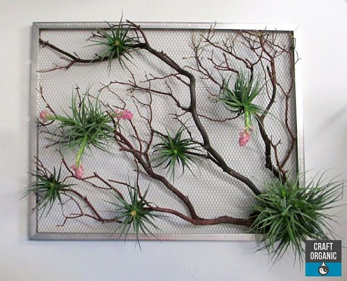 metal frame with wire mesh, containing large dried branch, green hanging air plants, with pink blossoms