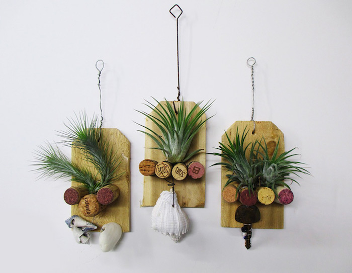 wooden boards with wire hangers, hanging air plants, cork bottle stoppers, and various seashells