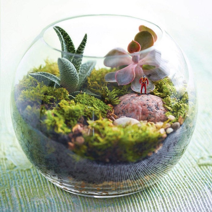 air plant terrarium, clear glass bowl, filled with dirt, pebbles and moss, reddish stone with tiny, human-shaped figurine, green and pinkish succulents