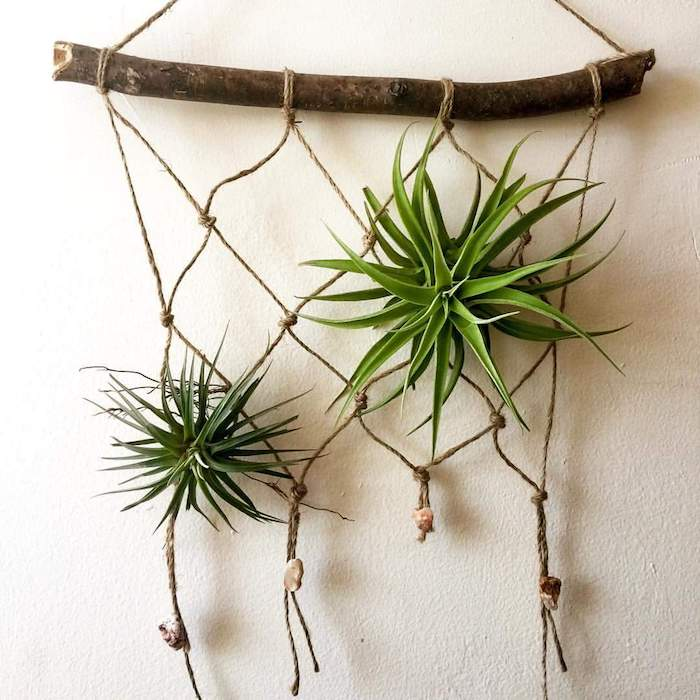 simple macrame wall ornament, made from wooden stick, and beige string, with two hanging air plants, and several pebbles