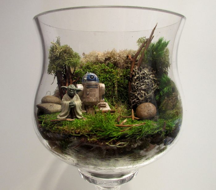 star wars figurines, of yoda and r2d2, inside a transparent container, air plant terrarium, with moss and little sticks, shaped like a large glass