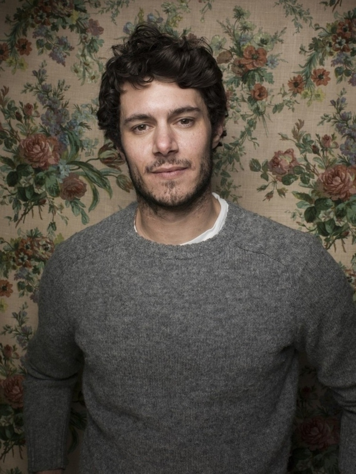 adam brody in grey knitted jumper, standing in front of a vintage, floral wallpaper in cream, green and pale red, dark brunette short curly hair