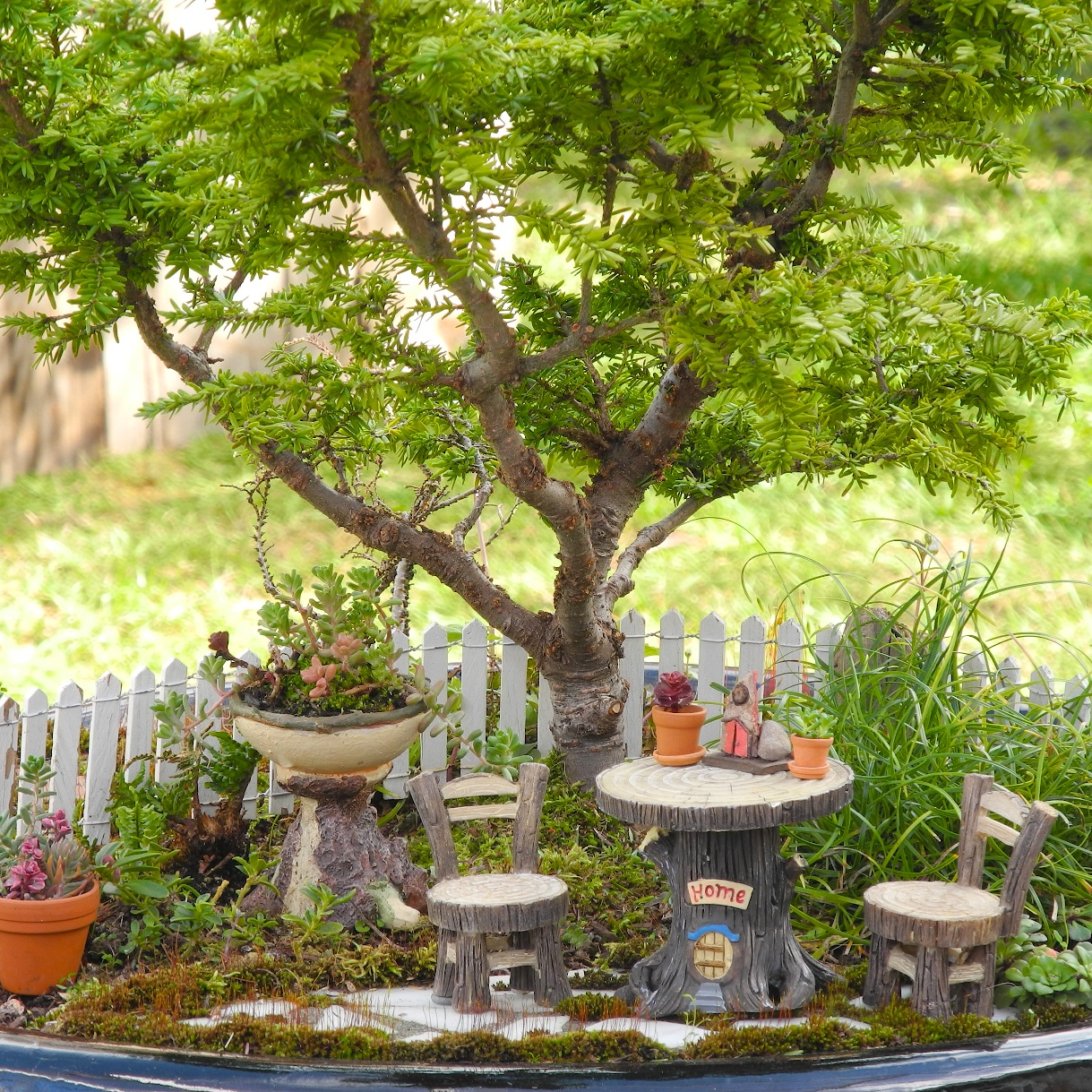 painted tiny moulding clay table, with matching chairs, made to look like made from wood, how to make a fairy garden, bonsai tree and moss