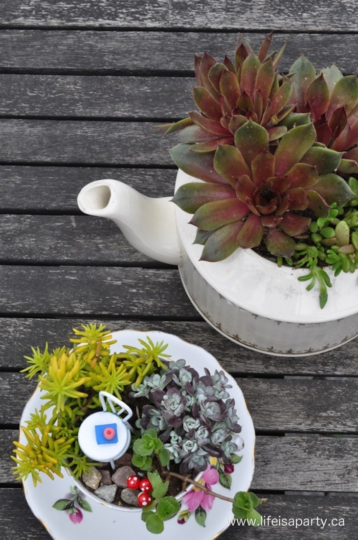 teapot in white, with two different kinds of succulents planted inside, near succulent fairy garden, made inside a teacup, decorated with miniature white stool, and several tiny plastic mushrooms