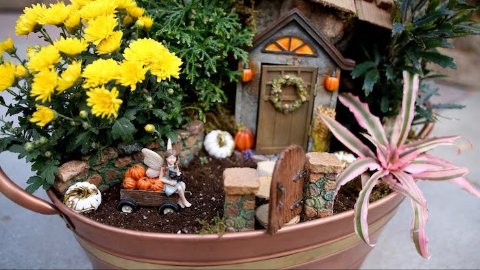 autumn-themed fairy garden, inside a metal bucket, with yellow flowers, and a pink and green air plant, decorated with small house, and a figurine of a fairy, sitting on a miniature pumpkin cart