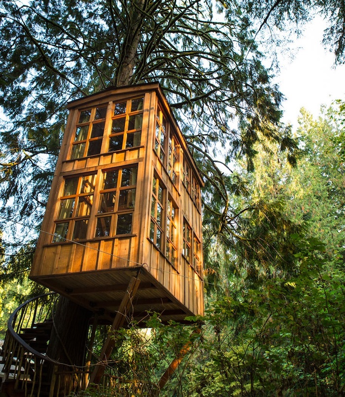 treehouse ideas, wooden two story building, with several windows, built above the ground, around a large tree, and accessible through a winding staircase