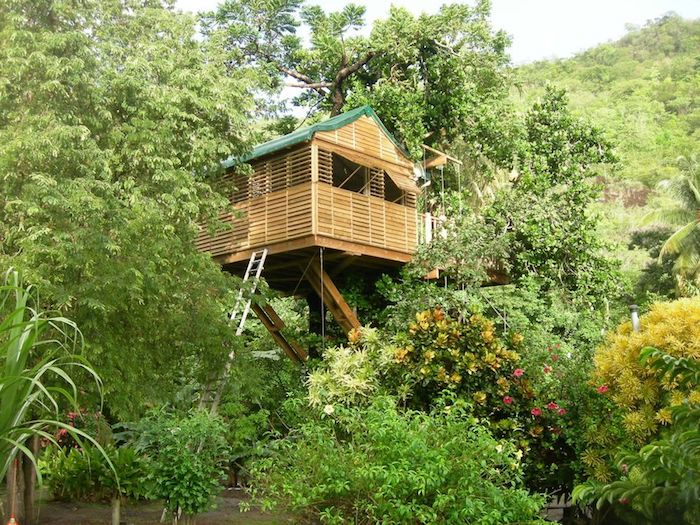 lots of trees and other vegetation, surrounding a small tree house, made of light colored wood, long white ladder