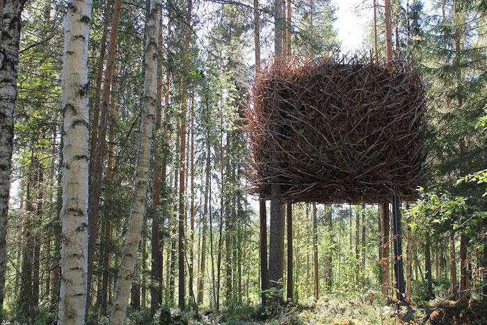 treehouse covered with many branches, looking like a cube-shaped nest, built on several trees, high above the ground