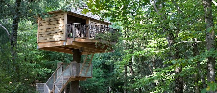 several sets of stairs, leading to a simple wooden backyard treehouse, with a small terrace, many green trees all around