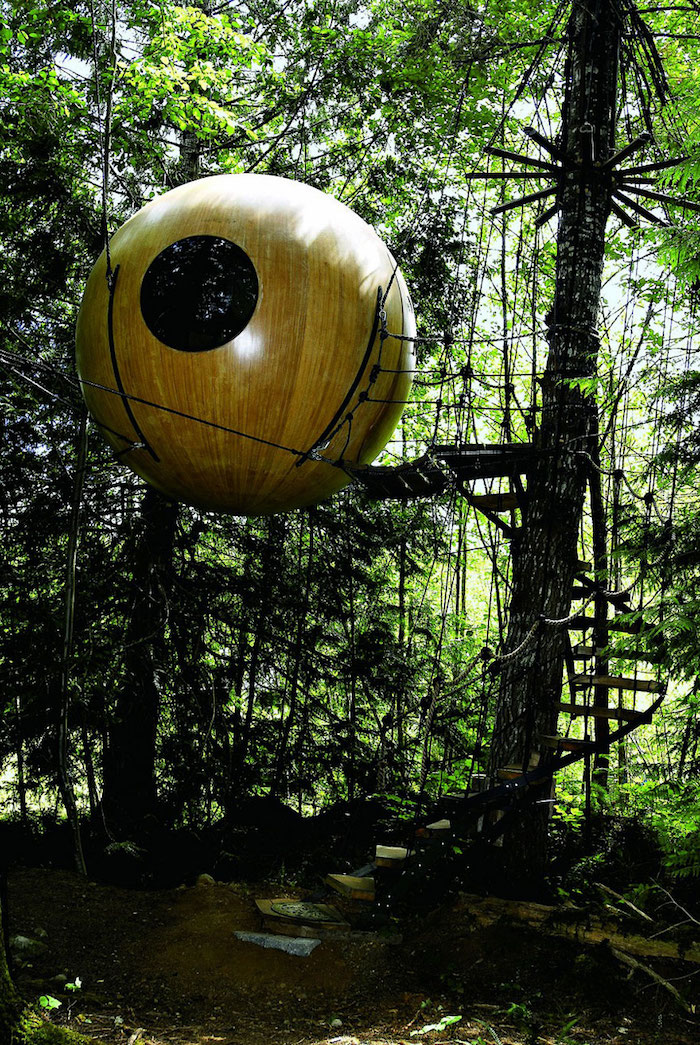 backyard treehouse, circular wooden structure, with round window, suspended above the ground, on several tall trees, thick green forest