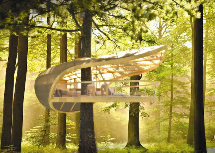 bright sunny green forest, with a white modern structure, built around one of the trees, cool tree houses, open air forest shelter