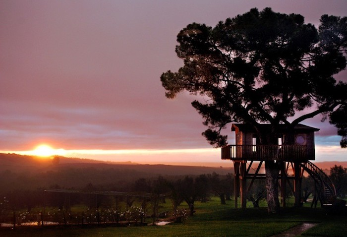 setting sun in pink and orange, big silhouette of a tree, with a house built around it, suspend high above the ground, treehouse designs, winding wooden stairs
