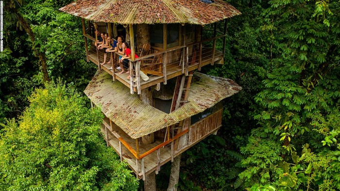people leaning on the railing of a wooden terrace, attached to a two story tree house, made of wood, and built in the middle of a green forest
