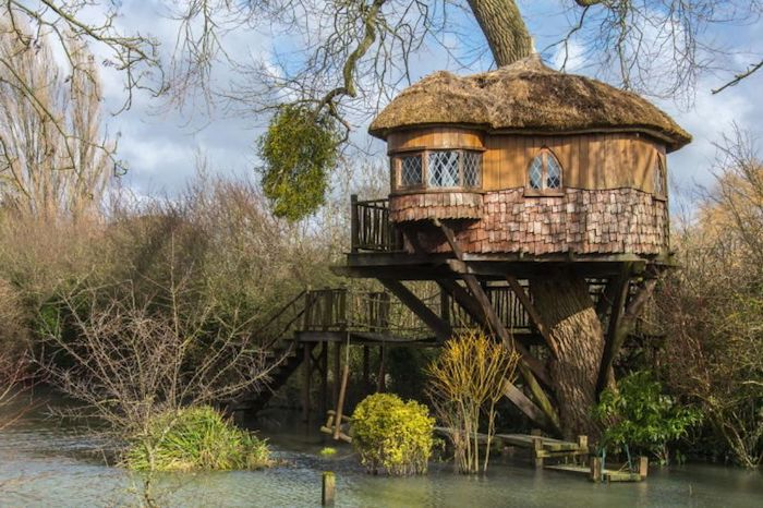 cottage with a thatched roof, and a small terrace, built on a big old tree, overlooking a lake, surrounded by vegetation, adult treehouse