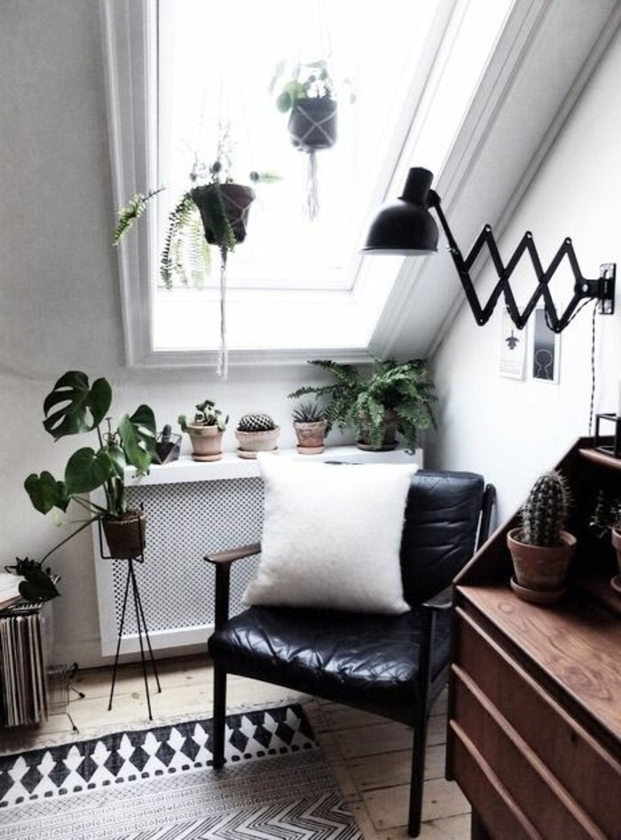 cacti and other potted plants, in the corner of a bright room, with a ceiling window, and light beige floor, simple living room designs, black chair and a wooden desk