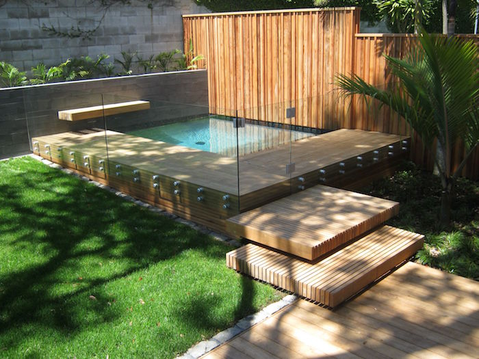 steps leading to a pool, surrounded by clear glass panels, small backyard pool ideas, palm tree and green grass, wooden fence and patio