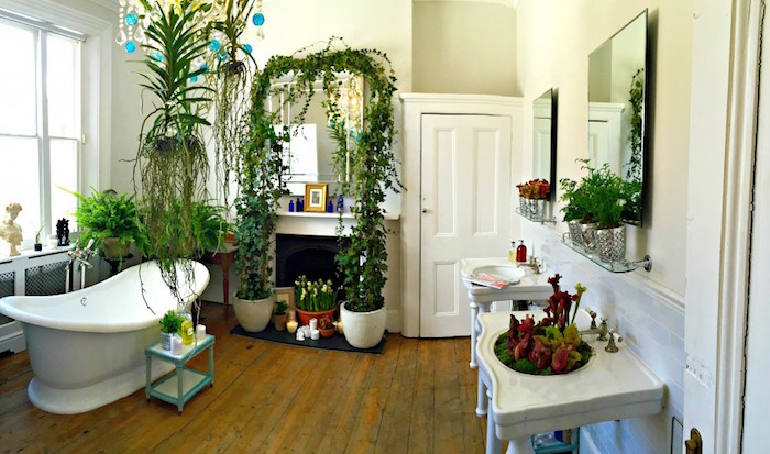 plants of different shapes and sizes, inside a room, with vintage wooden floor, containing a white bathtub, diy bathroom décor, a big window and vintage furniture