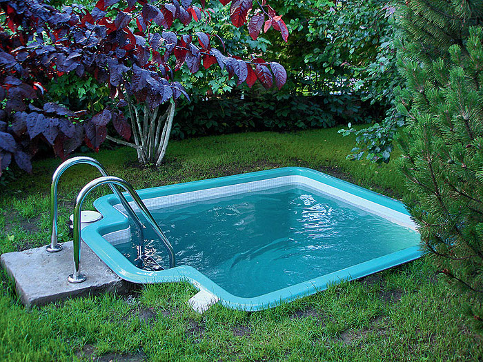 1001 ideas for charming small backyard pool ideas - Small backyard landscape designs ...