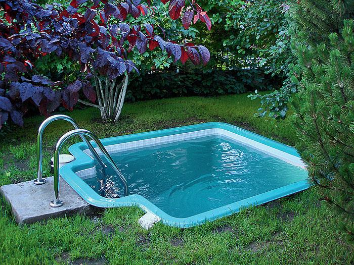 1001 ideas for charming small backyard pool ideas - Small backyard landscaping ideas ...