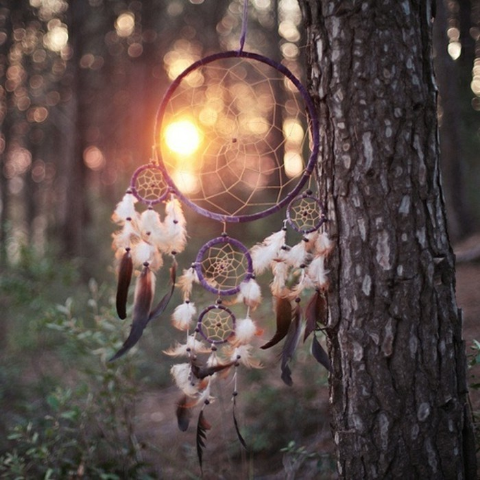 sunset in the forest, tree trunk decorated with an authentic-looking, purple dream catcher, with five nets, and many white, and brown feathers