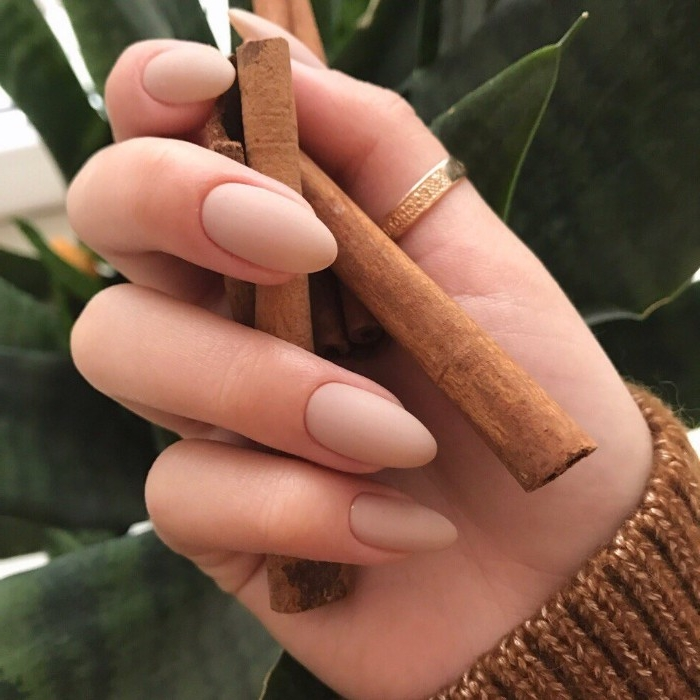 thumb gold ring, on a hand, holding several cinnamon sticks, oval nails with matte, nude nail polish