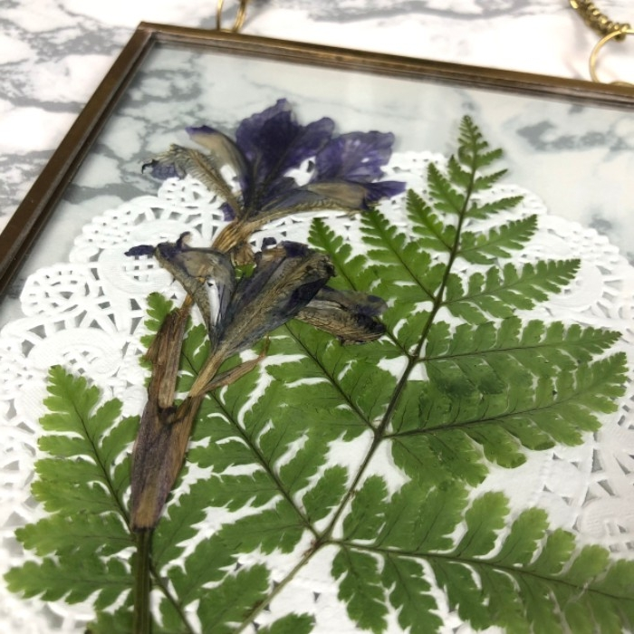 pressed blue flower, and a green fern leaf, decorated with a paper doily, dorm wall décor, inside clear glass