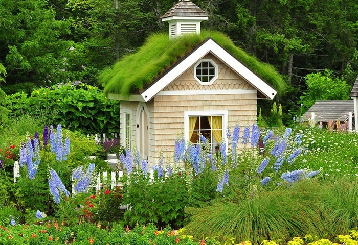 tiny square house, with a gabled roof, covered by green grass, she shed, inside a garden, with various flowers and shrubs