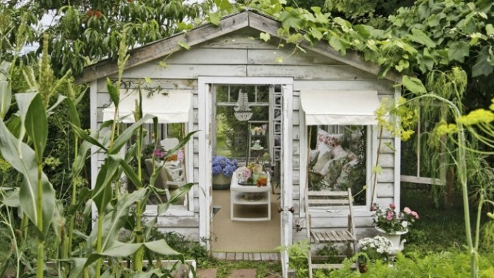 lots of plants growing around a wooden, vintage style shed, garden shed ideas, with open door, and two big windows