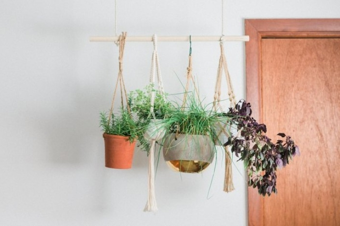 four different indoor plants, in pots tied with rope, and suspended from a wooden rod, hanging from the ceiling