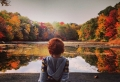 Happy Thanksgiving Wishes – Lots of Ideas And 80 Gorgeous Fall Images