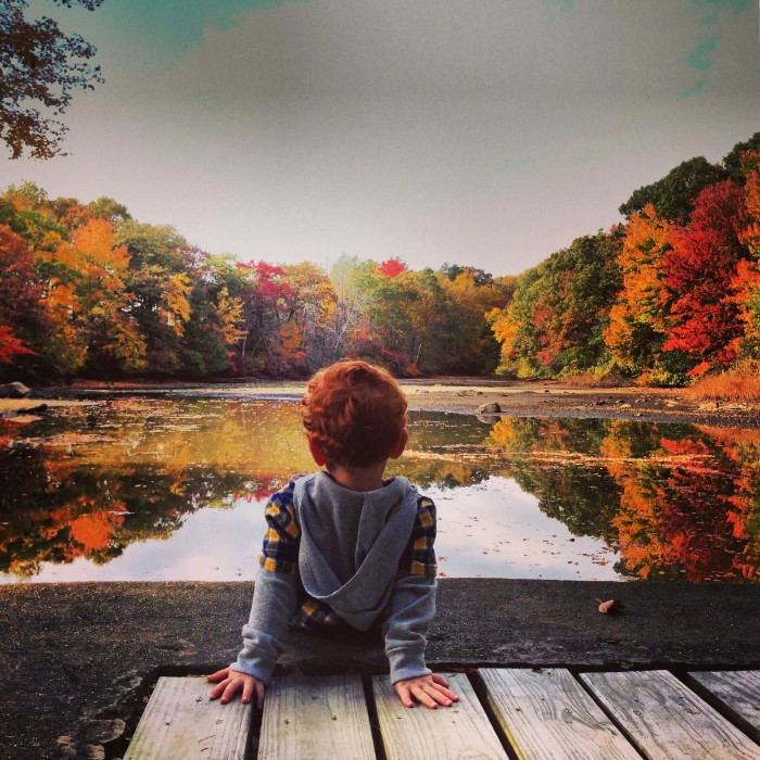 toddler sitting by a lake, surrounded by multiple trees, with fall leaves in different colors, happy thanksgiving wishes, green and yellow, orange and red