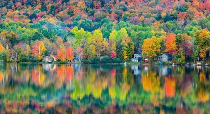 trees with folliage in many different colors, reflected in a large lake, thanksgiving message to employees, several small houses near the shore