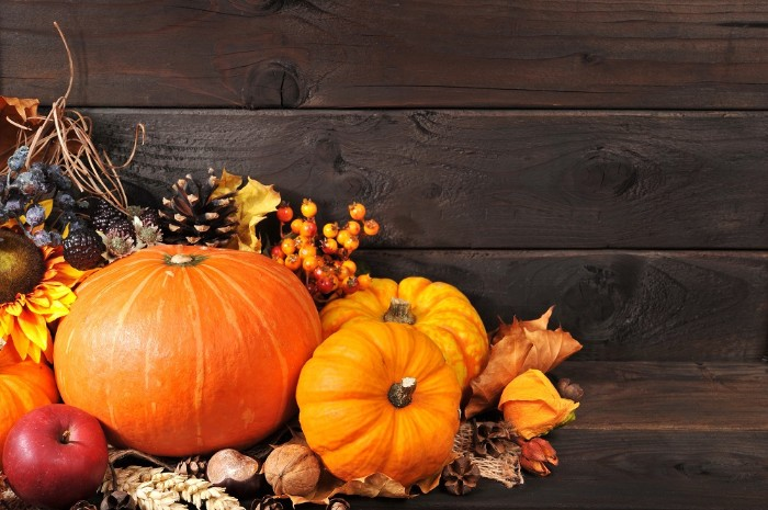 walnuts and orange pumpkins, an apple and dried fall leaves, a sunflower and wheat stalks, thanksgiving text messages, dark brown wooden planks in the background
